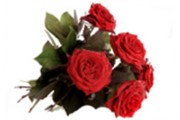 Kwiaty.jpg (7 KB)